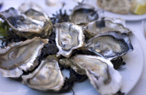 falmouth-oyster-festival-whatsonincornwall-awilderlife