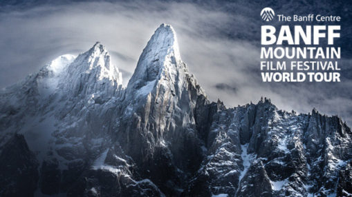 whats-on-in-cornwall-in-february-a-wilder-life-banff-film-festival