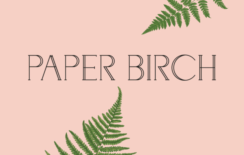 paper birch a cornish stationery lifestyle brand inspired by